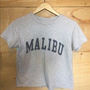 Gray Brandy Melville Malibu tee